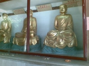 xiamen-budda-temple