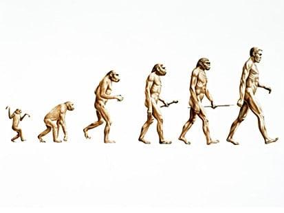 increase evolution of man