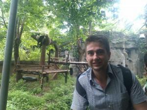 去了成都大熊猫研究基地